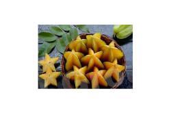 Карамбола Фрукты Тайланда: Карамбола - уникальный экзотический фрукт