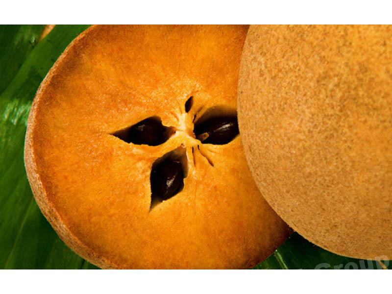 Sapodilla - Thai Fruit: Sapodilla - fruits doux et sucré