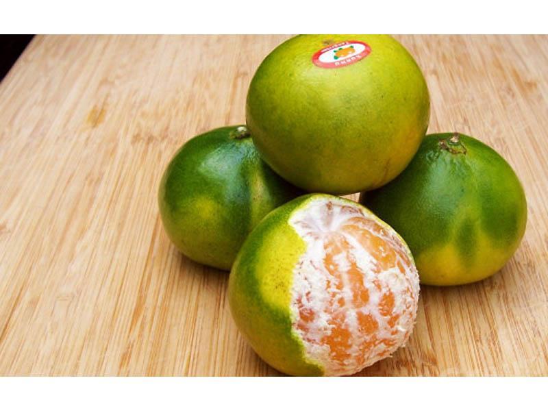 Фрукты Таиланда: Зеленый мандарин — Танжерин