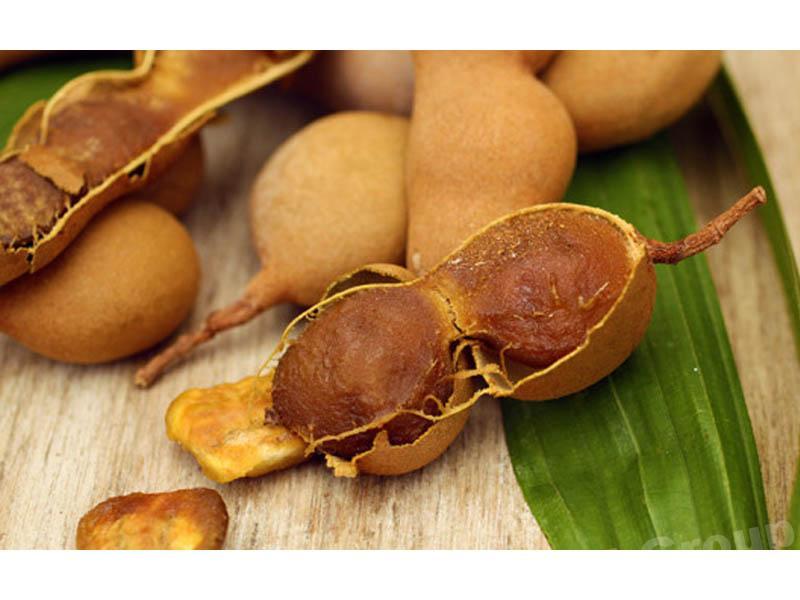 Тамаринд - экзотические плоды Таиланда
