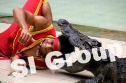 zoo_phuket (4)