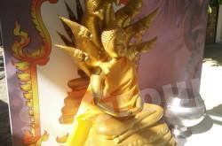Позы Буды - суббота