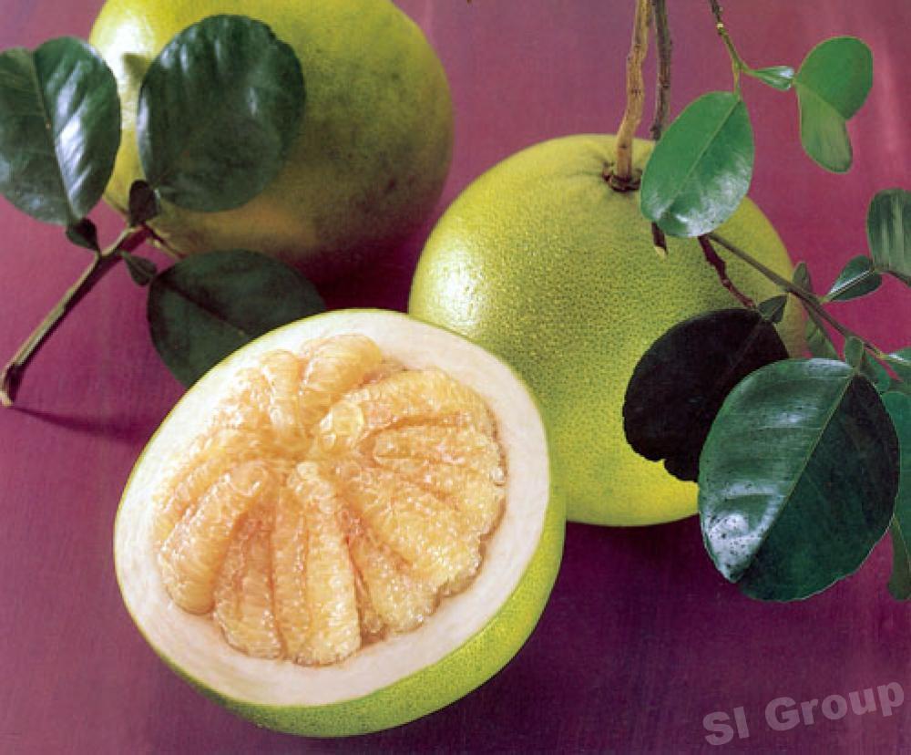 Плоды Помело