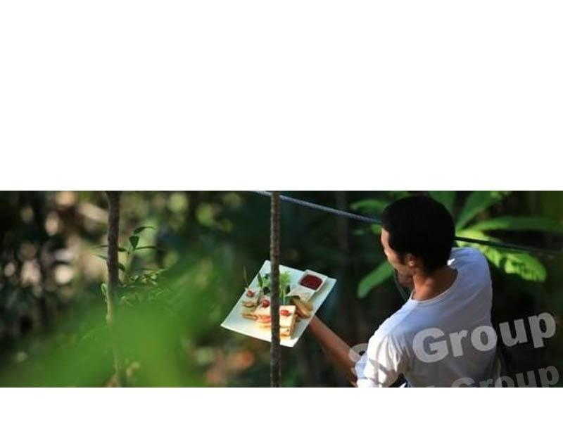 Ресторан на дереве в Таиланде