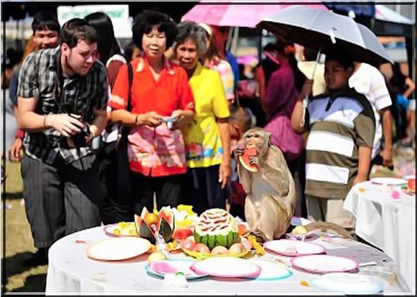 Фестиваль обезьян в Тайланде