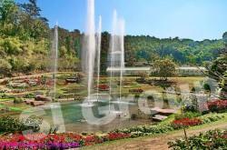 Queen Sirikit Botanical Gardens Botanical Gardens Queen Sirikit