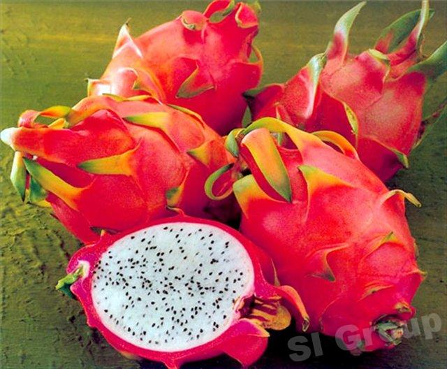 Дракон фрукт в Тайланде — geow mangon