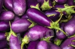 Баклажан фиолетовый Purple Eggplant Thai : Makeumuang Season: All year round Availability: Fresh and Frozen Packaging: As per customer request