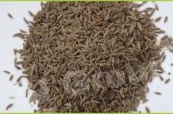 Базилик Tree Basil (ocimum gratissimum) Thai : Yeera Season: All year round Availability: dry seed Packaging: Plastic bag and glass jar