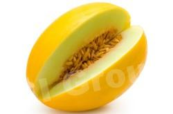 Дыня Melon Thai (тайское название): taeng mu Season (сезонность): all year round Availability (вид): Fresh and Frozen Packaging (упаковка): Tray or Carton Box