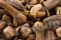 Гвоздика Clove (Evgenia Caryophyllus) Thai : Kanploo Season: All year round Availability: dry seed end powder Packaging: Plastic bag