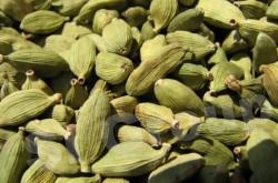 Кардамон Cardamon seed (Elletterria Cardamomum) Thai : Kravan Season: All year round Availability: dry seed Packaging: Plastic bag and glass jar