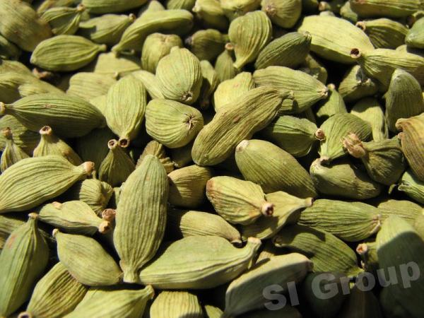 Кардамон Cardamon seed (Elletterria Cardamomum) Thai : Kravan Season: All year round Availability: dry seed Packaging: Plastic bag and glass jar
