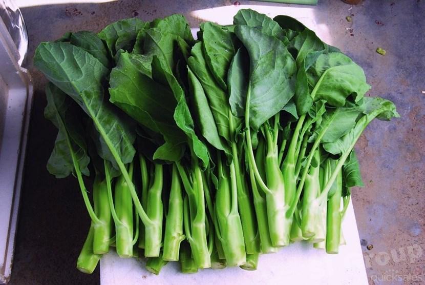 Китайская листовая капуста