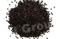 Кунжут черный Black Sesame (Sesamum indicum) Thai : Nga dam Season: All year round Availability: dry seed Packaging: Plastic bag and glass jar