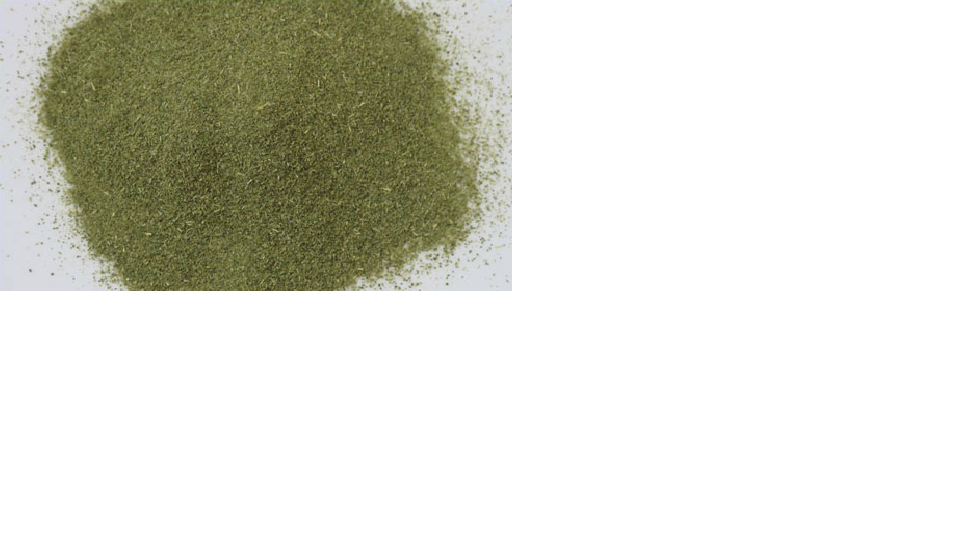 Лайм Кафрский порошок из сухих листьев Dry Kaffir Lime Leaf Powder (citrus histrix DC) Thai : Baimakood Season: All year round Availability: dry seed end powder Packaging: Plastic bag and glass jar