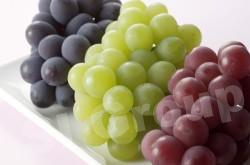 Виноград Grape Thai (тайское название): A Gnun Season (сезонность): All year round Availability (вид): Fresh and Frozen Packaging (упаковка): Tray or Carton Box
