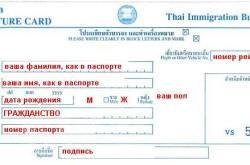 Иммиграционная карта