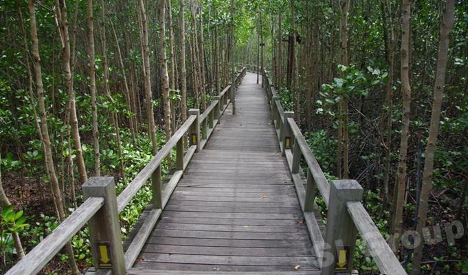 Пранбури парк Хуа Хин (Pranburi forest park)