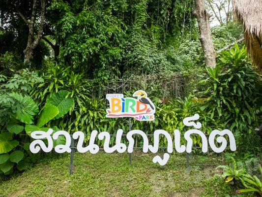 Phuket Tours - Bird Park in Phuket