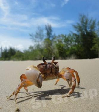 Экскурсии Пхукета: Остров Ко Ра — эко деревня!
