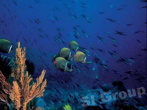 Остров Ко Пайям в Таиланде