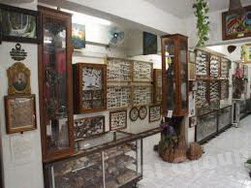 Музей Насекомых и Природных Чудес