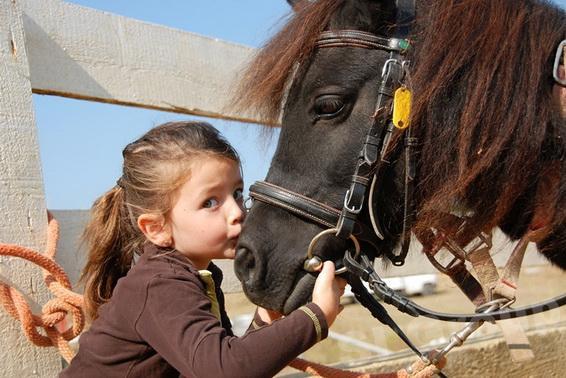 Экскурсии Пхукета: Прогулка на лошадях на Пхукете