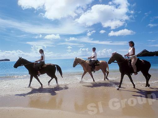 Прогулка на лошадях на Пхукете