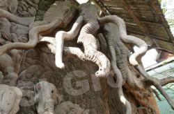 Храм Ват Лок Моле