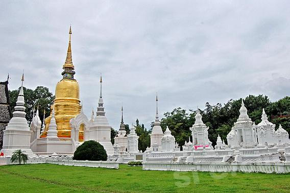 Excursions Chiang Mai: Temple flower garden or Wat Suan Dok