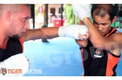 Тайгер Муай Тай. Тайский бокс