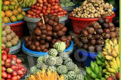 Импорт, экспорт Фруктов из Тайланда