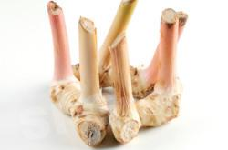 Галангал Galangal Thai: Kha Season: All year round Availability: Fresh and Frozen Packaging: As per customer request