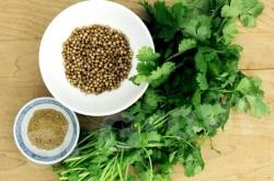 Кориандр Coriander Thai : Pakchee Season: All year round Availability: Fresh and Frozen Packaging: As per customer request