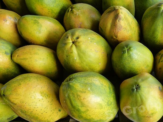 Папайя Papaya Thai (тайское название): Ma La Kor Season (сезонность): All year round Availability (вид): Fresh and Frozen Packaging (упаковка): Tray or Carton Box