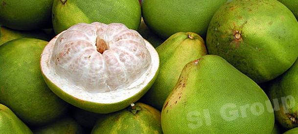 Помело Pomelo Thai (тайское название): Som-o Season (сезонность): All year round Availability (вид): Fresh and Frozen Packaging (упаковка): Tray or Carton Box