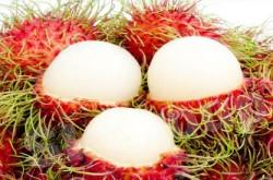 Рамбутан Rambutan Thai (тайское название): Ngao Season (сезонность): April - August Availability (вид): Fresh and Frozen Packaging (упаковка): Tray or Carton Box