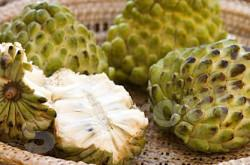 Сахарное яблоко Custard apple Thai (тайское название): Noi Nha Season (сезонность): All year round Availability (вид): Fresh and Frozen Packaging (упаковка): Tray or Carton Box