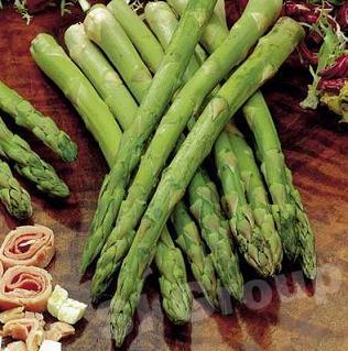 Спаржа Asparagus Thai : Normaifarang Season: All year round Availability: Fresh and Frozen Packaging: As per customer request