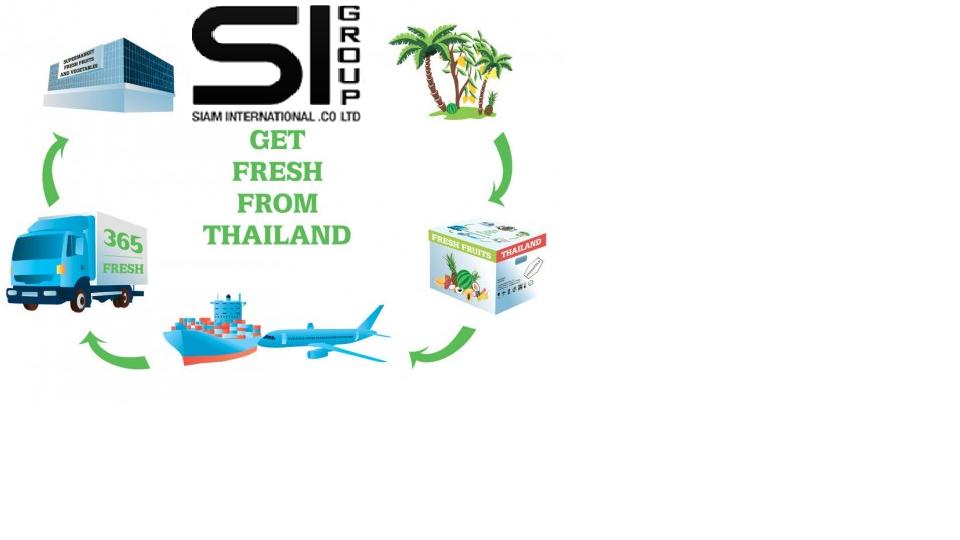 Компании по иморту, экспорту из Тайланда