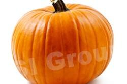 Тыква Pumpkin Thai : Fukthong Season: All year round Availability: Fresh and Frozen Packaging: As per customer request
