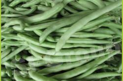 Экспорт импорт Фасоли из Таиланда. Зеленая фасоль Green bean Thai : Tuakak Season: All year round Availability: Fresh and Frozen Packaging: As per customer request