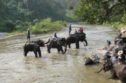 Северный Тайланд - Месалонг